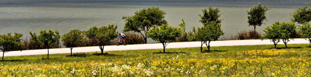 Cyclist athlete White Rock Lake, Dallas, Texas 75218